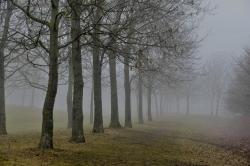 Kastrup Strandpark one foggy day