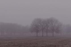 Kastrup Strandpark one foggy morning