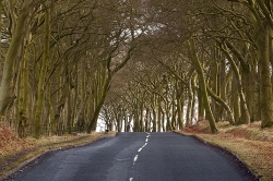 Road in Bathgate Scotland
